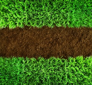 Green grass and earth Background